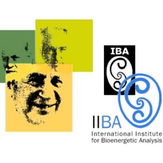 IIBA-graphic