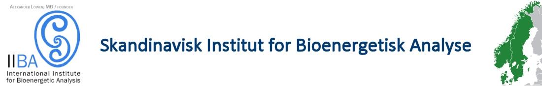 Skandinavisk Institut for Bioenergetisk Analyse Logo